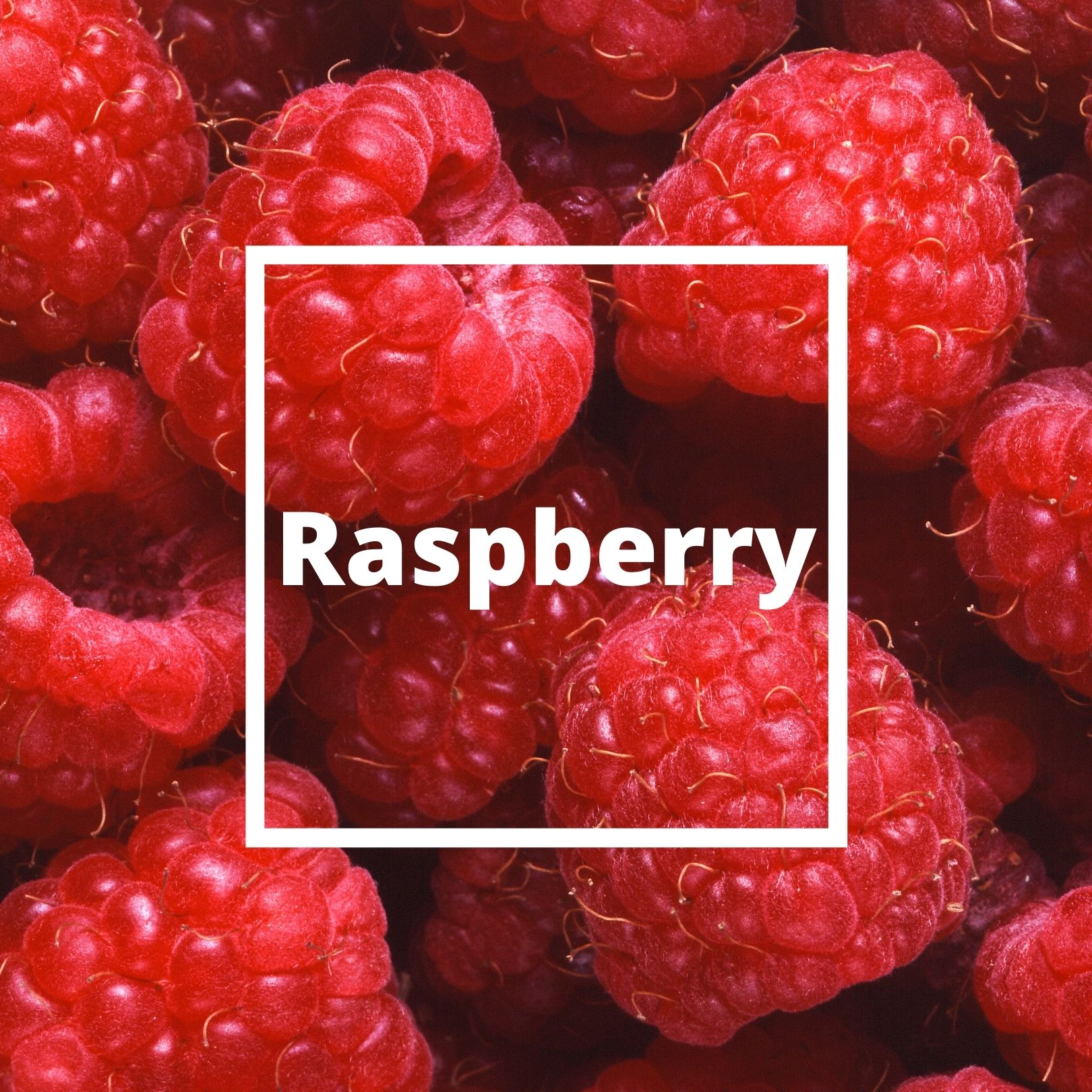 L'ATELIERO - Raspberry - Belle Mademoiselle