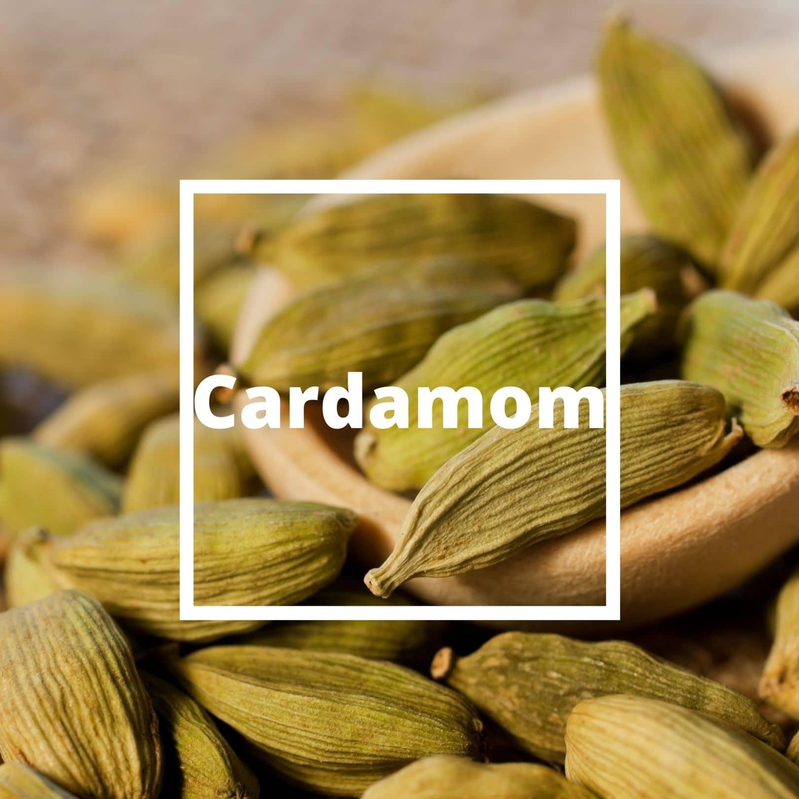 L'ATELIERO - Cardamom - Irresistible Man