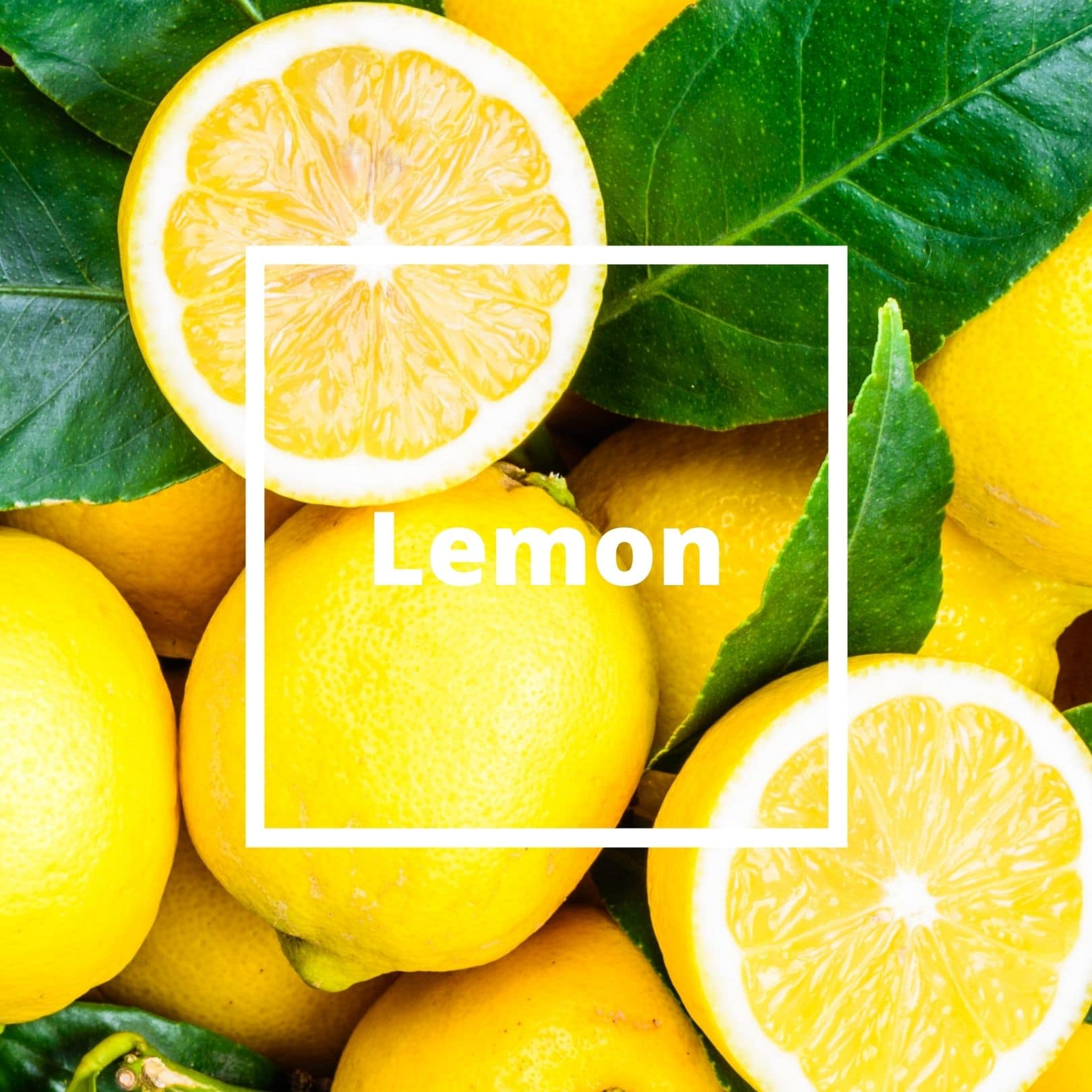 L'ATELIERO - Lemon - The One