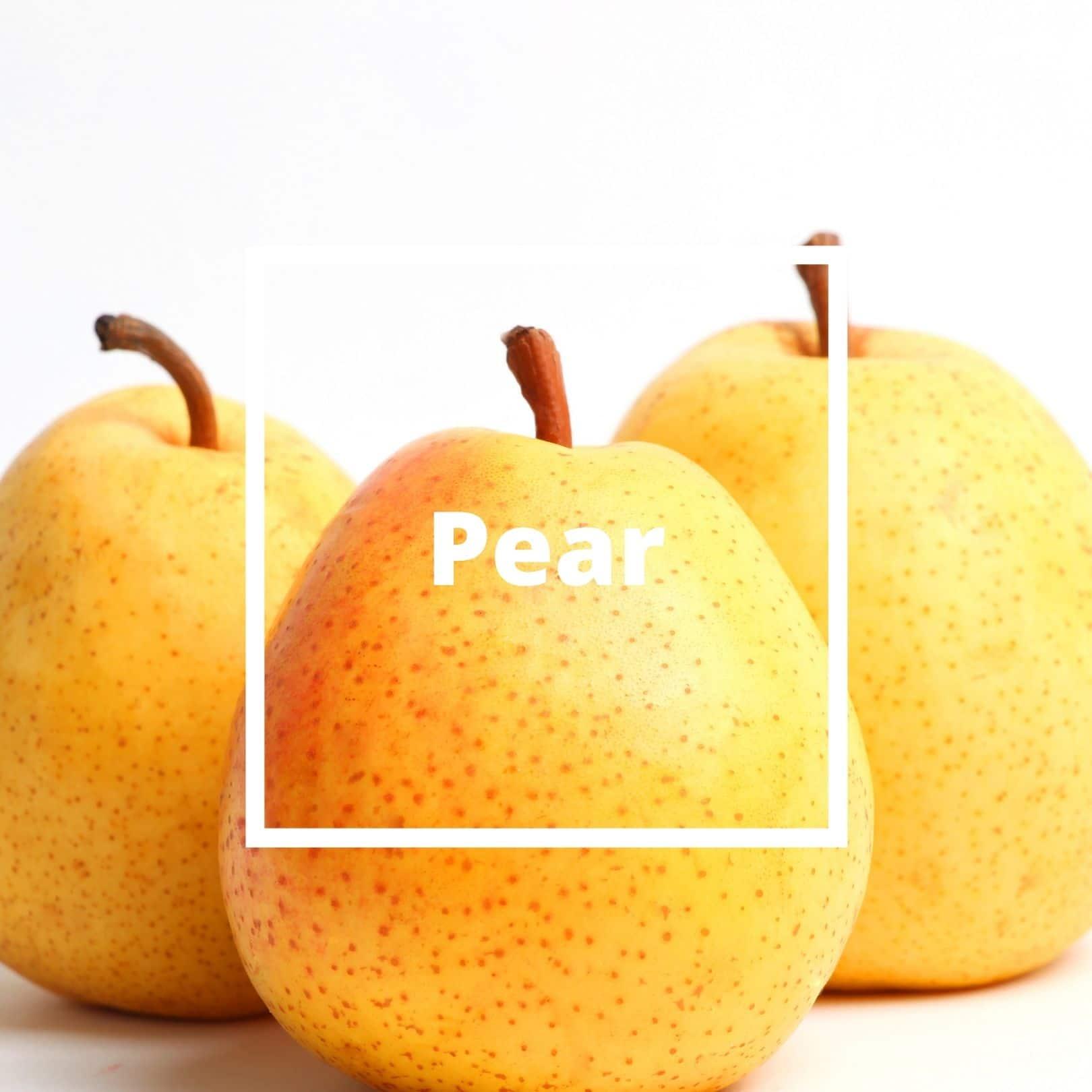 L'ATELIERO - Pear - Belle Mademoiselle